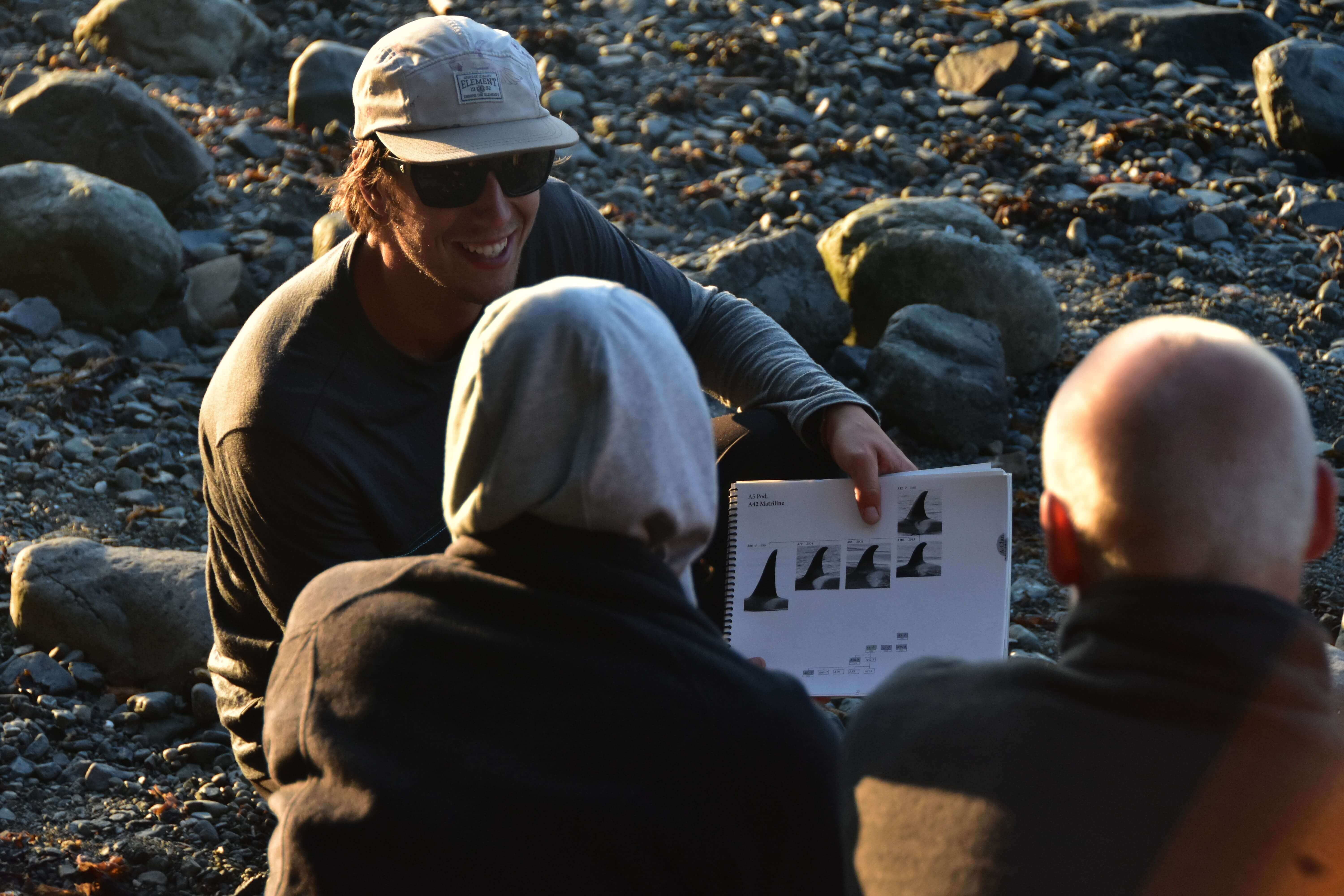 identifying orcas by dorsal fins